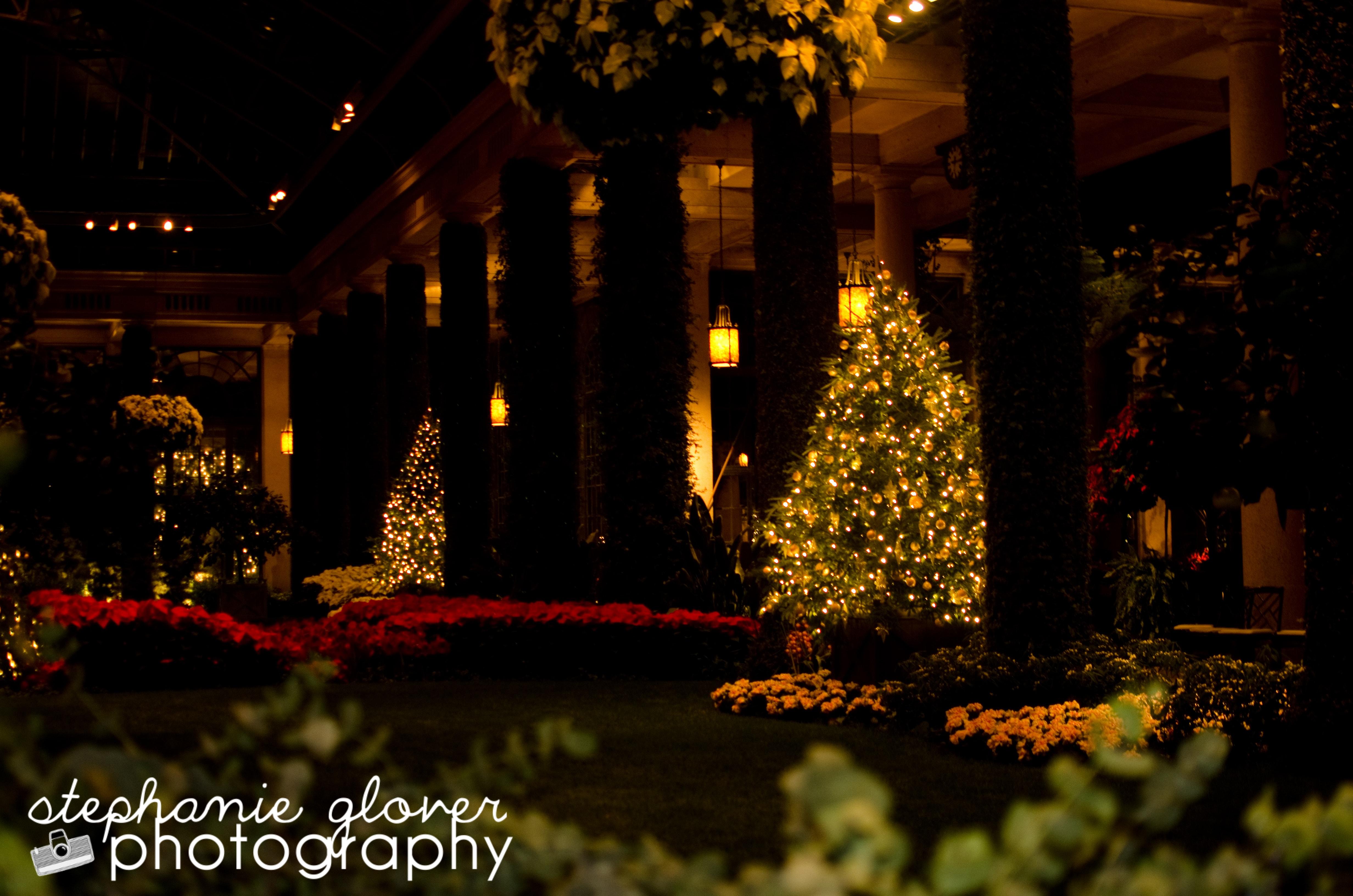 http://agrandelife.net/wp-content/uploads/2012/12/longwood-gardens-kennett-square-11.jpg
