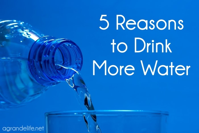 5 reasons to drink more water