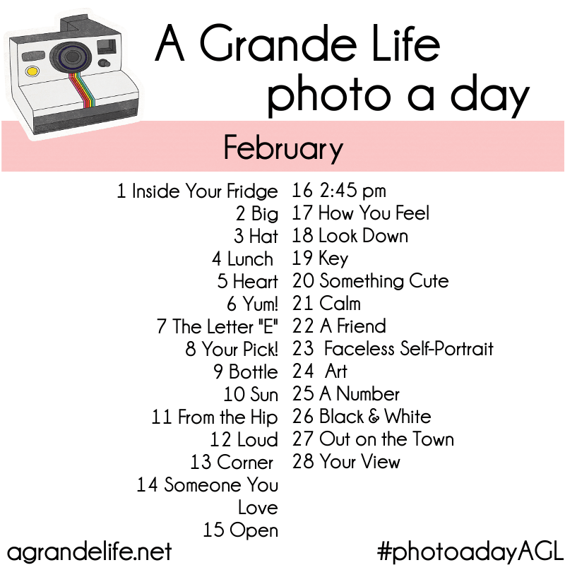photo a day february