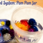 The Pom Pom Jar {Reward Jar}