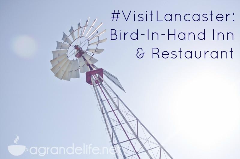 bird in hand inn