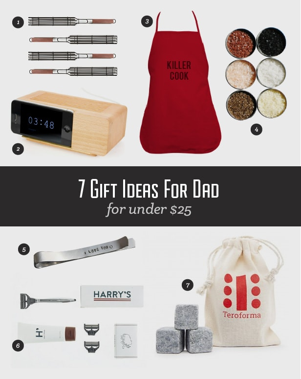 7 gifts for dad under $25
