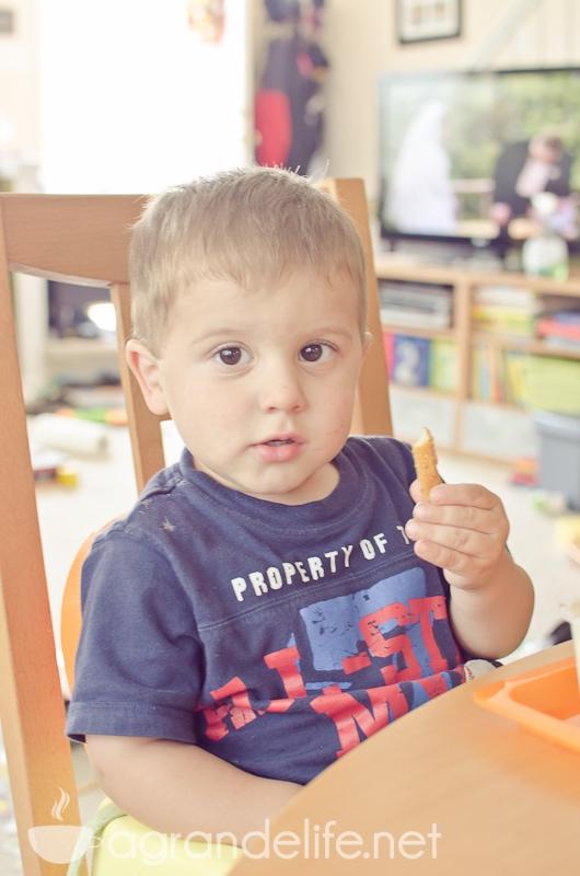 tyson chicken fries-3