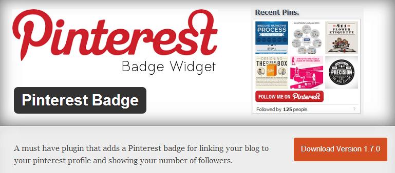 pinterest badge widget