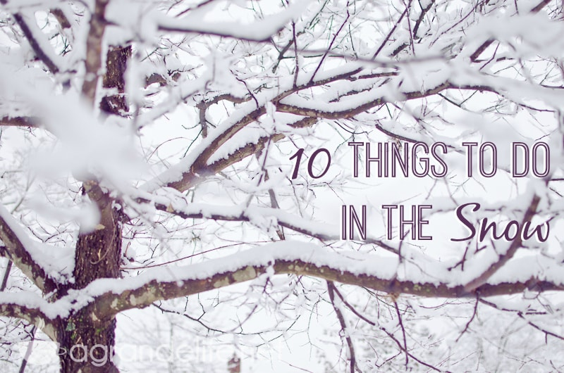 Things to do in the snow