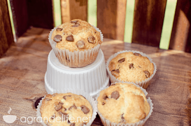 chocolate chip muffins-5