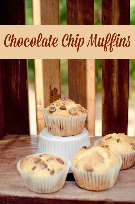 chocolate chip muffins-4