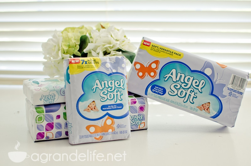 angel soft-1