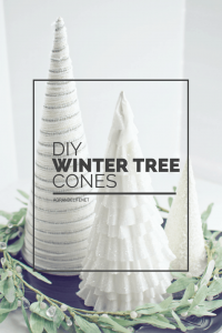 DIY WINTER TREE CONES (1)