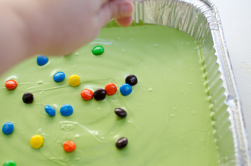 monster m&m bark-3