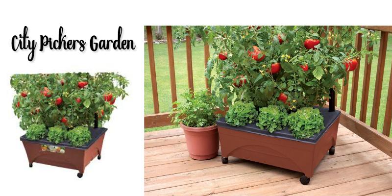 city pickers garden