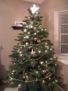 O Christmas Tree!
