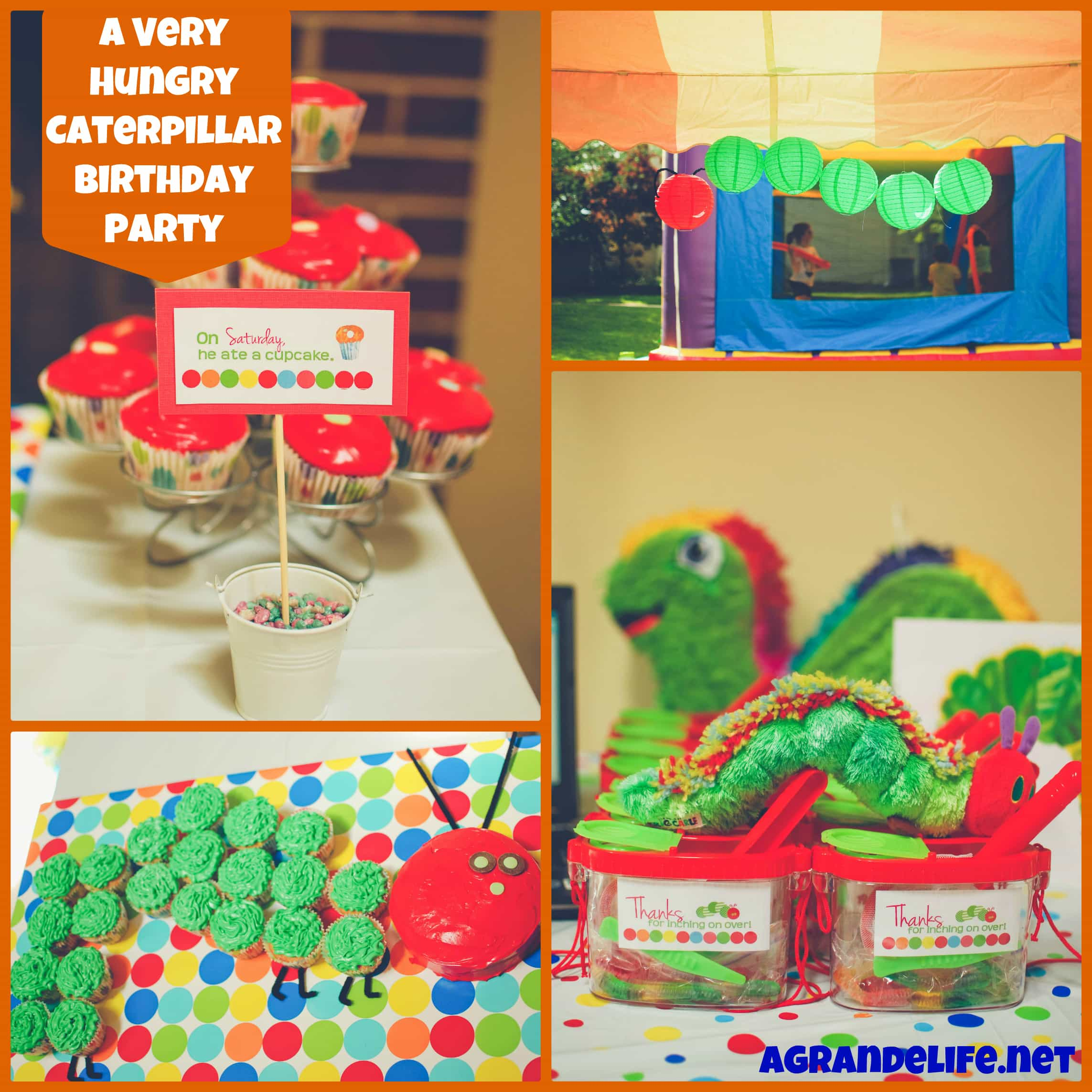 2017 05 the very hungry caterpillar lesson plans - A Very Hungry Caterpillar Birthday Party