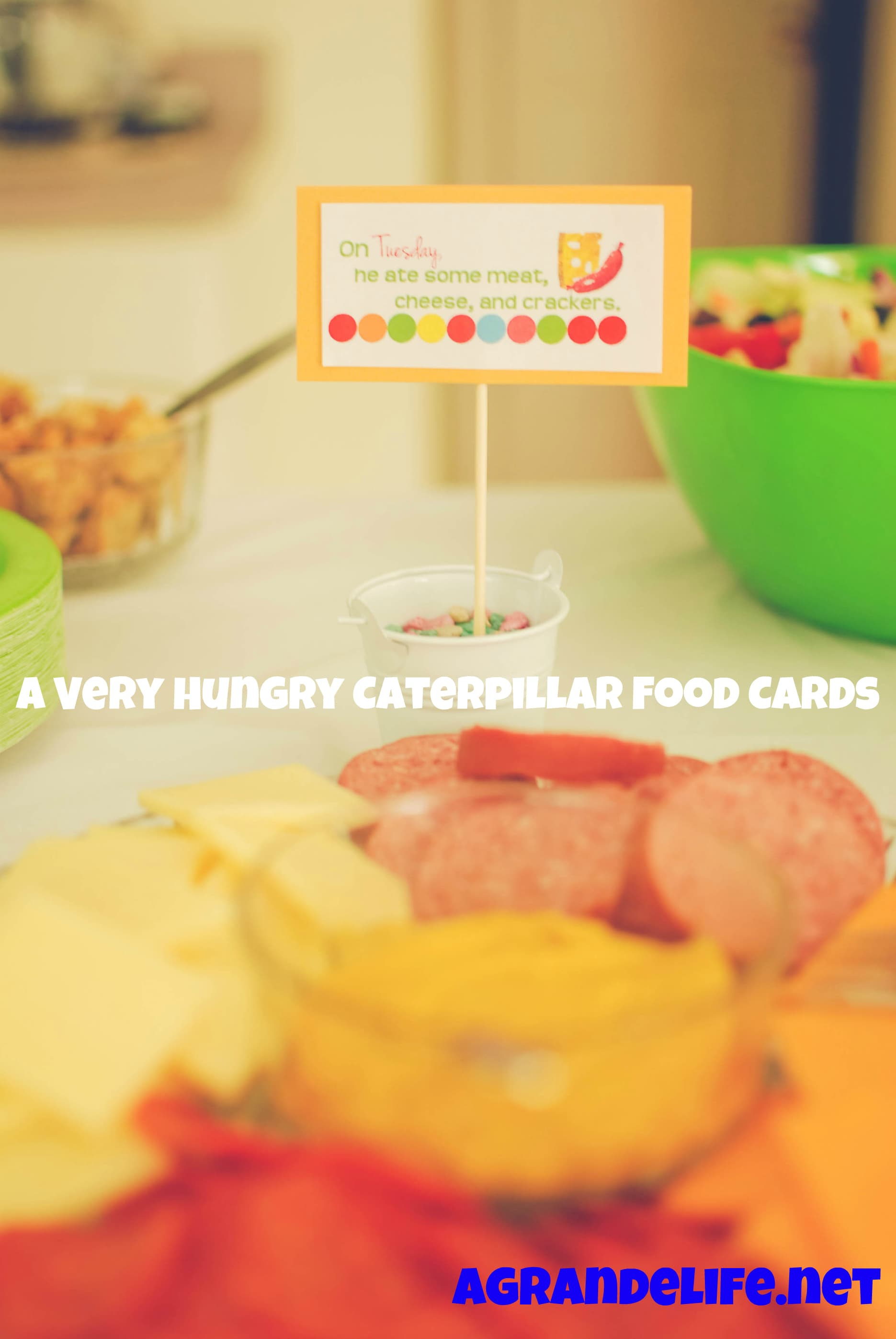 A very hungry caterpillar birthday party bookmarktalkfo Image collections