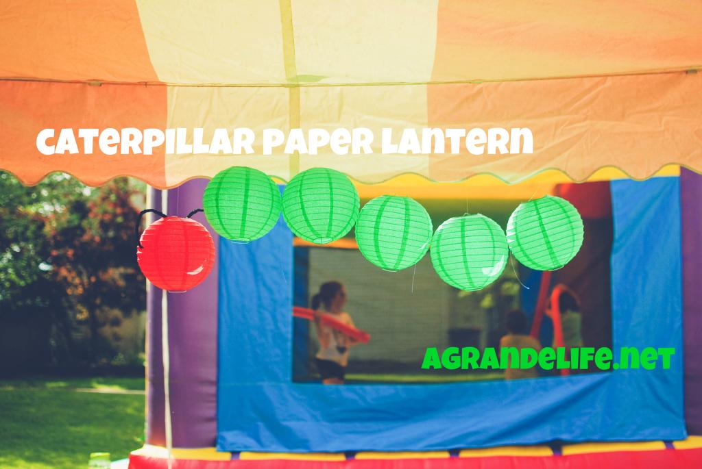 caterpillar paper lantern
