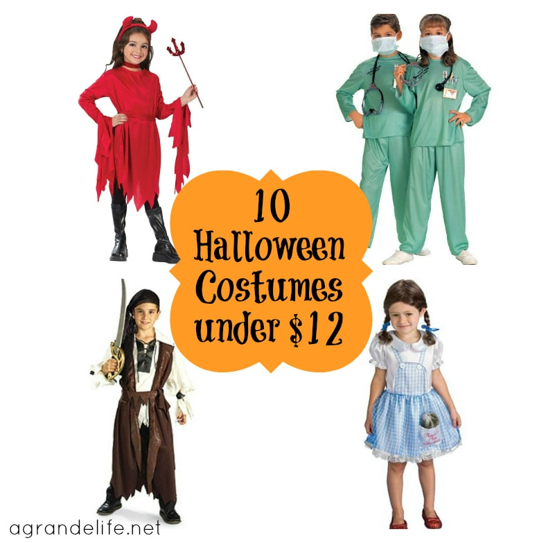 10 halloween costumes under $12