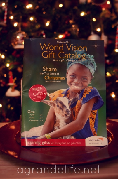 world vision gifts 2012 catalog