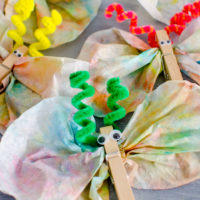 Coffee Filter Butterflies Craft Project