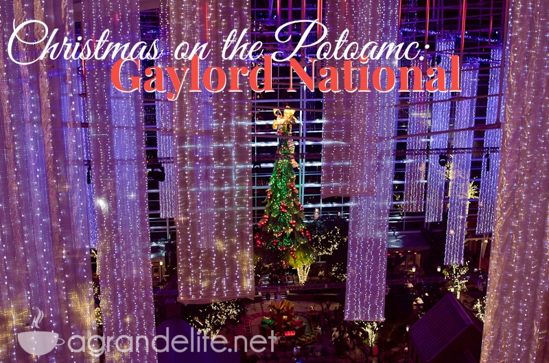 christmas on the potomac gaylord national