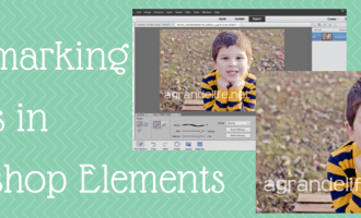 Watermarking Images inPhotoshop Elements