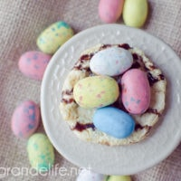 Edible Easter Nests with WHOPPERS ROBIN EGGS