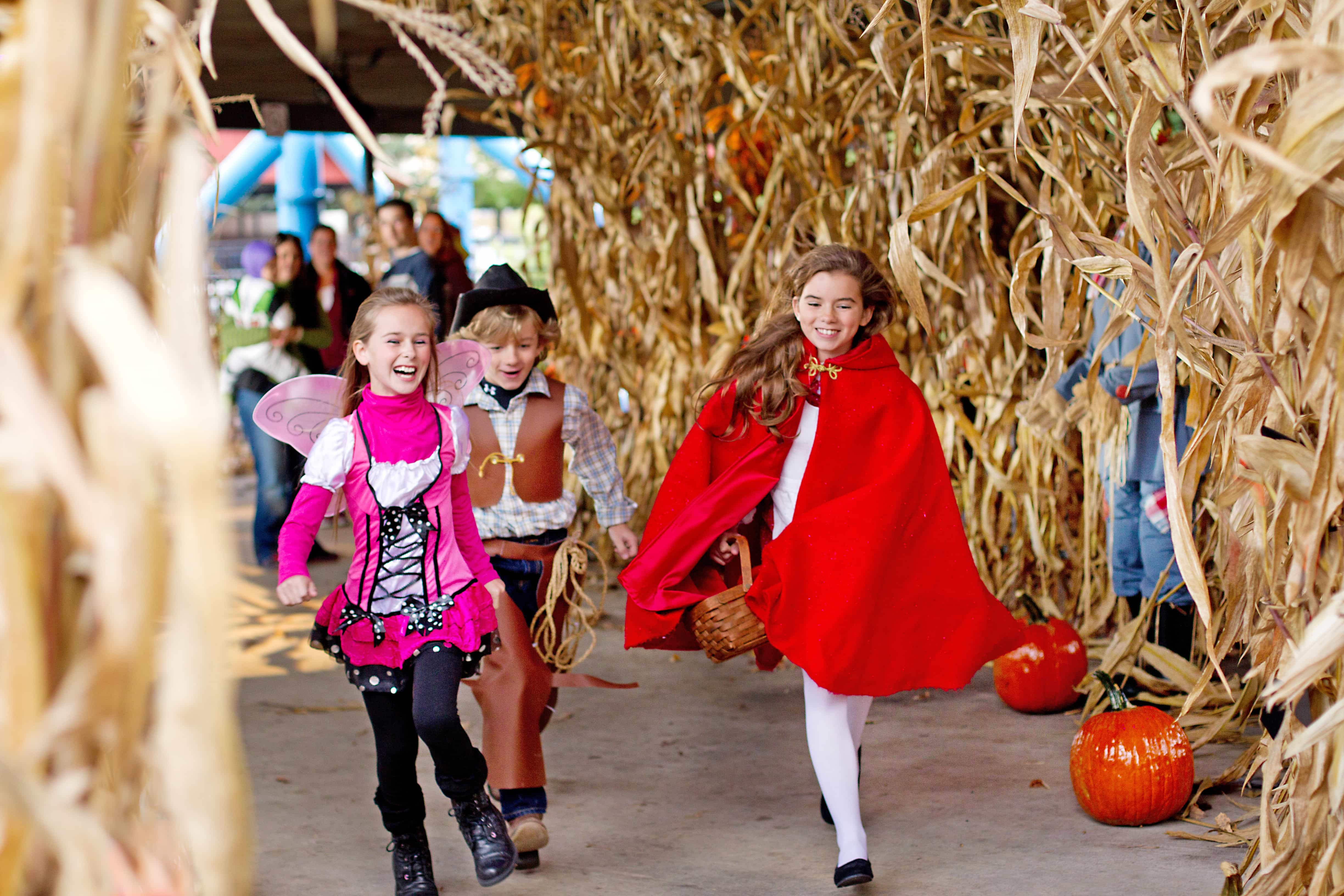 Hersheypark in the Dark is a Fun Time for Kids of All Ages! - A ...