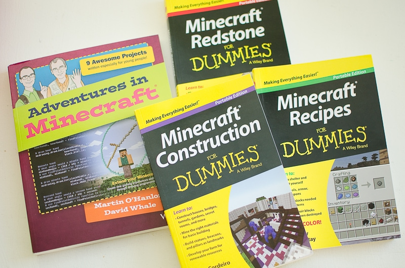 minecraft for dummies-1