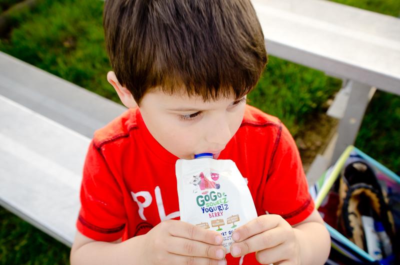 gogo squeez yogurt-2