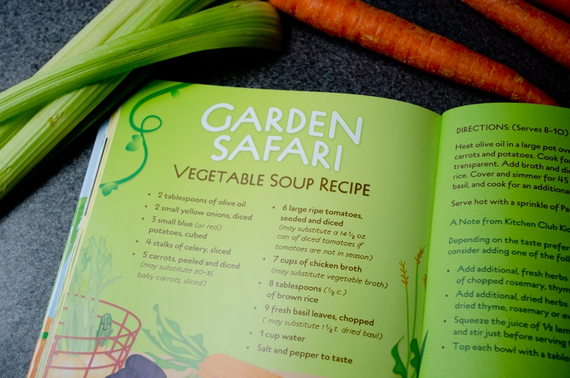 garden vegetable soup-1
