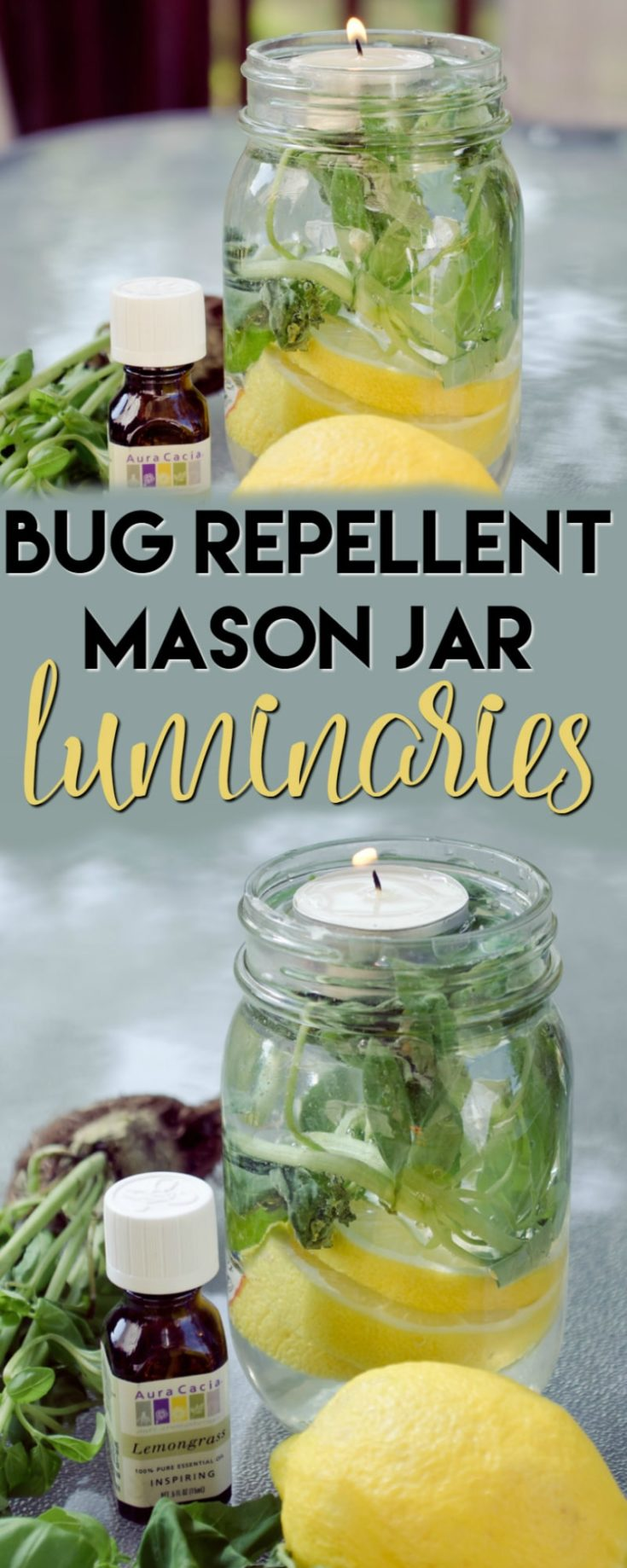 These Bug Repellent Mason Jar Luminaries will be the hit of your summer! Not only will they keep the bugs away but they smell great without any nasty chemicals!