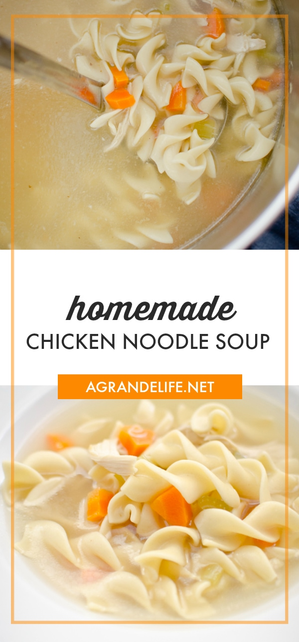 Homemade Chicken Noodle Soup is a tried and true comfort food. This family fave is quick, easy and tasty. What more could you want in a soup?