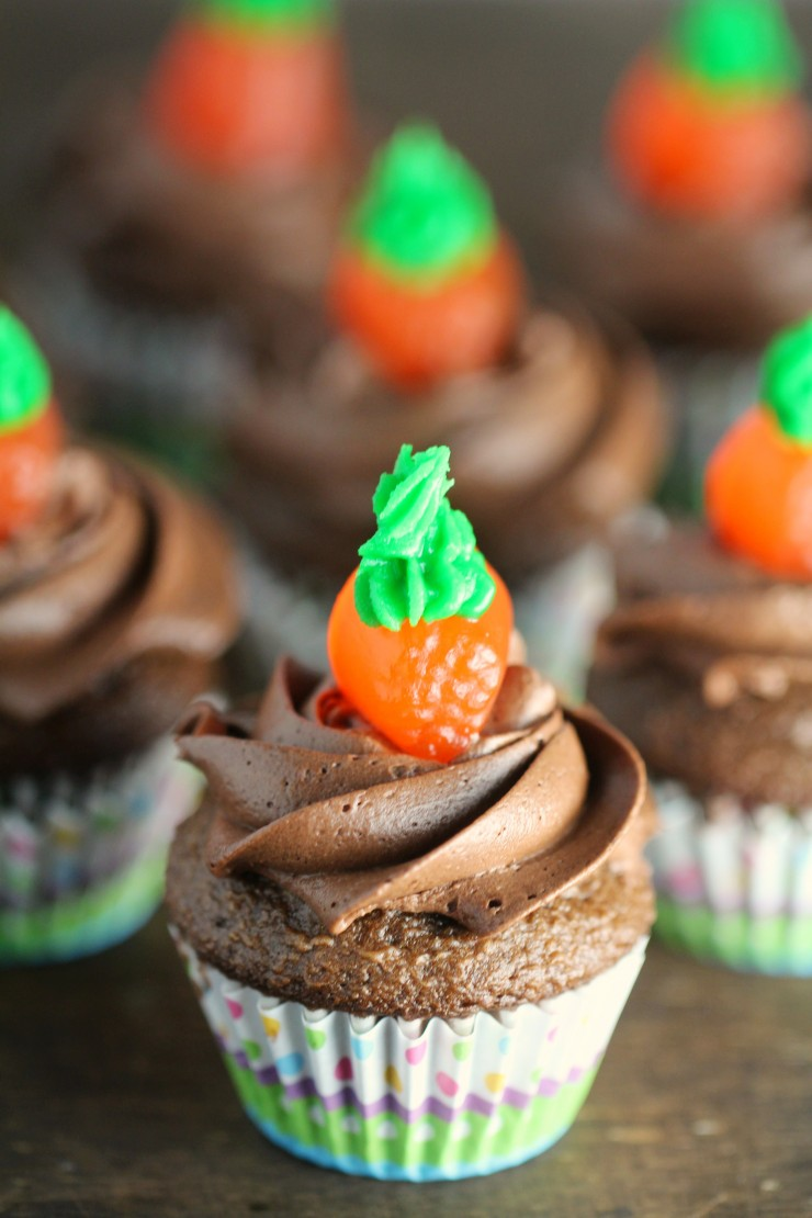 Carrots-and-Dirt-Cupcakes-1