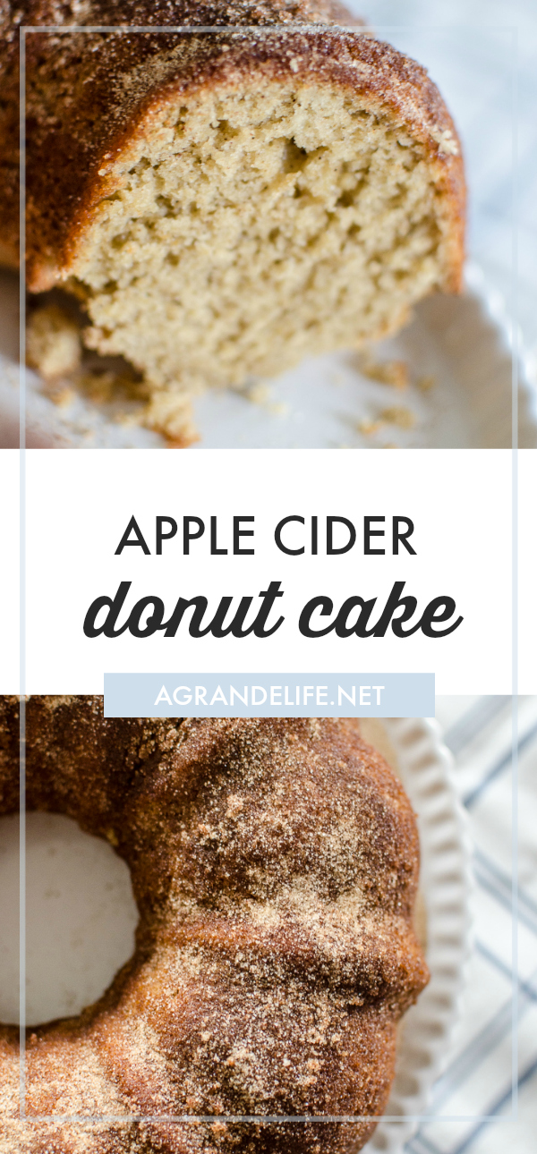 Your favorite apple cider donut, reinvented into a moist spiced cake, coated in sweet cinnamon and sugar!