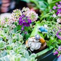 How to Make a Gnome Garden