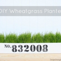DIY Wheatgrass Planter