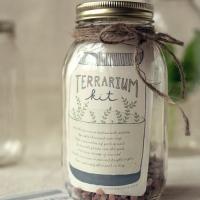 Terrarium Kit