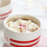 Peppermint Hot Chocolate & Mocha Spoons {homemade holiday gift}