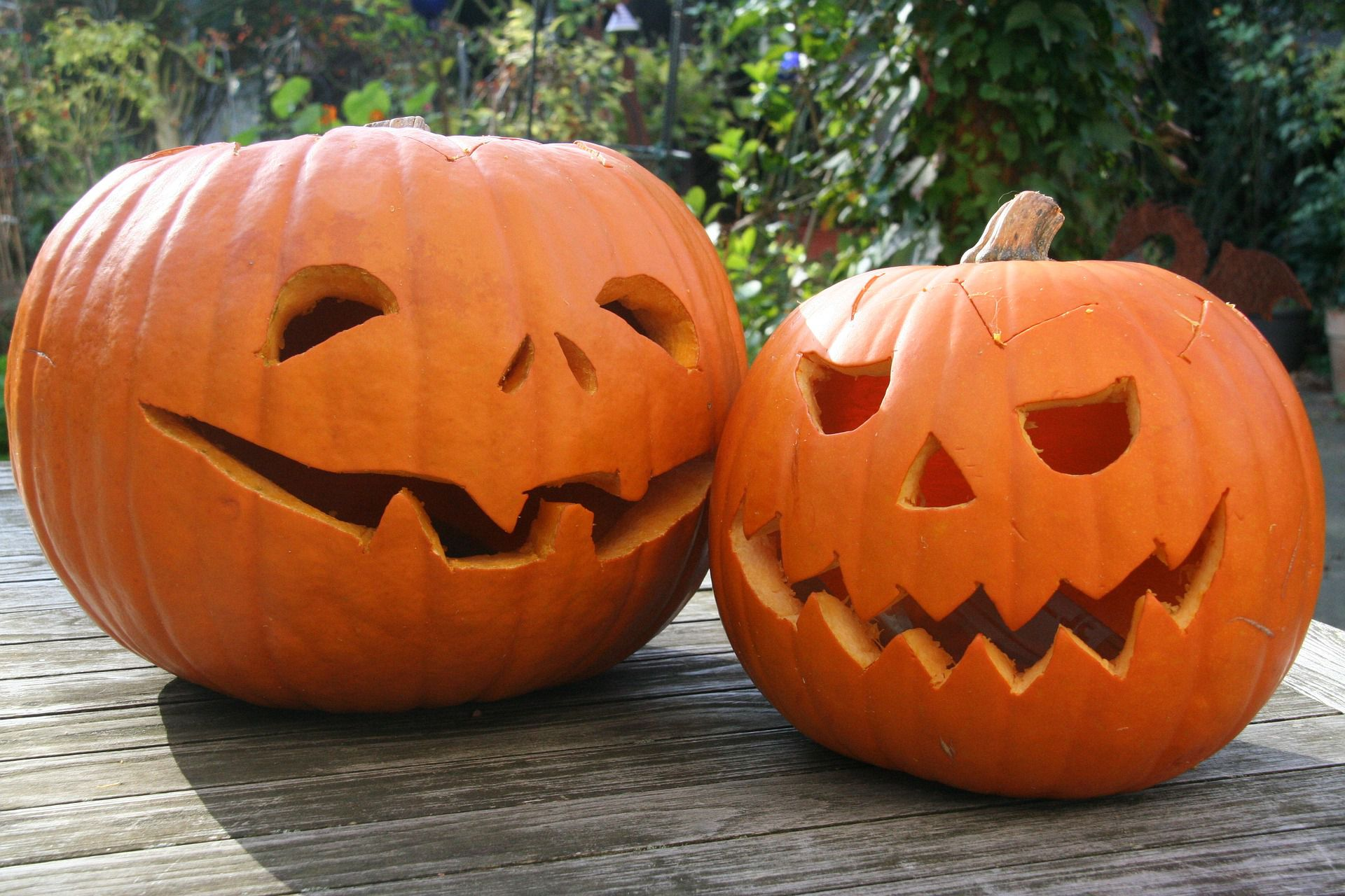 17 Places to Find Free Pumpkin Carving Patterns Online