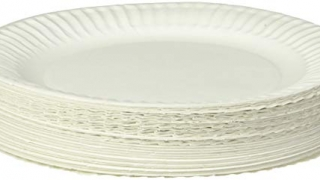 Uncoated Paper Plate