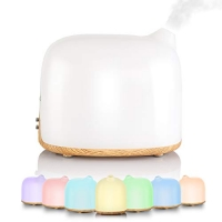 Cool Mist Humidifiers & Diffuser