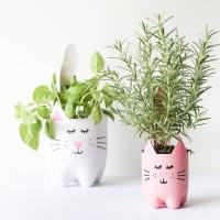 DIY Soda Bottle Kitty Cat Planters